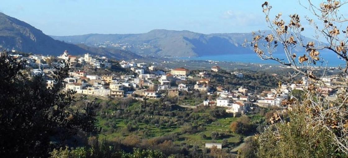 Mandali Kournas, Cretan olive oil, honey and more