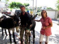 Donkeys and us